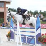 Mullagh Mac-futurs elite sologn vente-poney-finistere